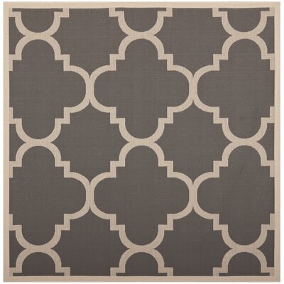Octavius Gray/Beige Indoor/Outdoor Area Rug Rug Size: Square 4