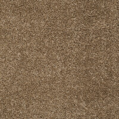 Helsel Dark Beige Area Rug Rug Size: Rectangle 8' x 10'