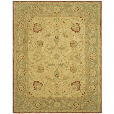 Anatolia Ivory/Rust Area Rug Rug Size: Rectangle 4 x 6