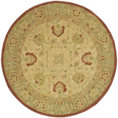 Anatolia Ivory/Rust Area Rug Rug Size: Round 4