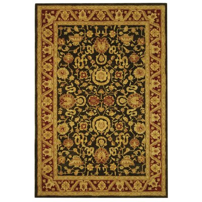 Anatolia Charcoal/Red Area Rug Rug Size: 6 x 9