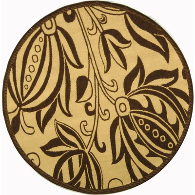 Courtyard Natural / Brown Outdoor Area Rug Rug Size: Round 5'3