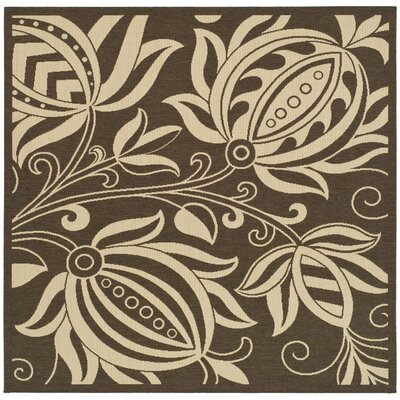 Courtyard Chocolate/Natural Outdoor Area Rug Rug Size: Square 6'7