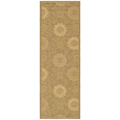 Courtyard Light Gold/Natural Outdoor Rug Rug Size: Runner 2'4