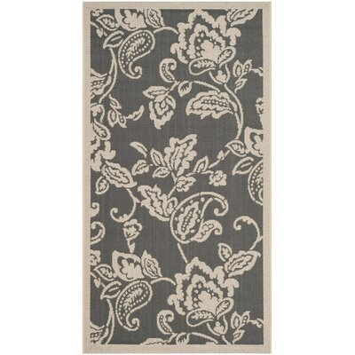 Highland Lily Anthracite/Beige Area Rug Rug Size: Rectangle 4 x 57