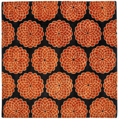 Rodeo Drive Rust/Black Area Rug