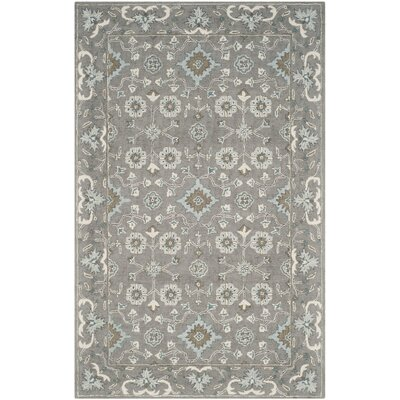 Kilbourne Hand-Tufted Gray Area Rug Rug Size: Rectangle 6 x 9