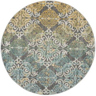 Evoke Gray/Blue Area Rug