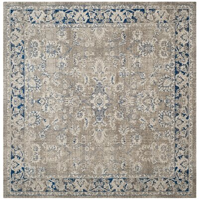 Palaiseur Taupe/Blue Area Rug Rug Size: Square 67