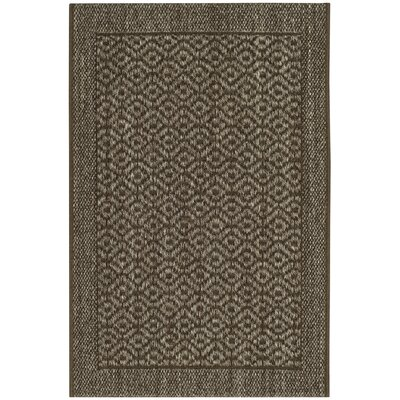 Leavenworth Brown Area Rug Rug Size: 2 x 3