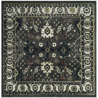 Logan Hamadan Dark Gray Area Rug Rug Size: Square 67