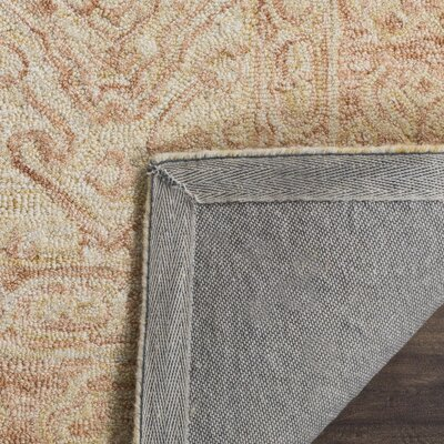 Chancellor Hand-Tufted Wool Ivory Area Rug Rug Size: Rectangle 3 x 5