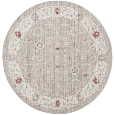 Jared Light Gray Area Rug Rug Size: Round 6