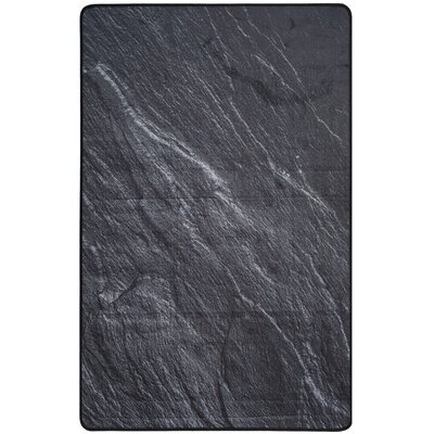 Kira Black Area Rug Rug Size: Rectangle 4 x 6
