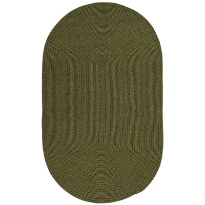 Peabody Hand-Woven Green Area Rug