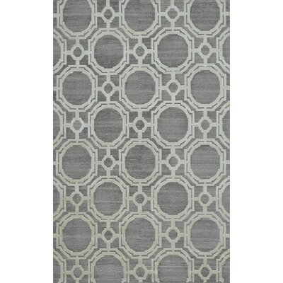 Anaya Hand-Knotted Silver Area Rug Rug Size: Rectangle 6 x 9