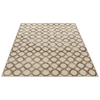 Darcie Stone/Cream Area Rug Rug Size: Rectangle 33 x 53