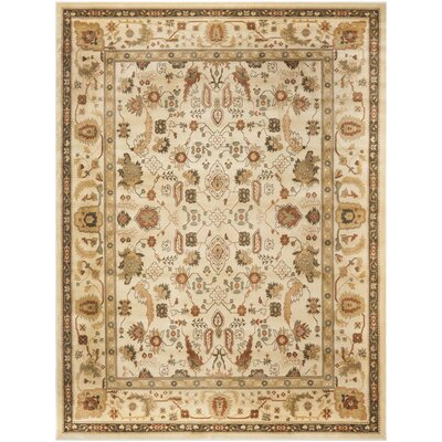 Wakely Cream Area Rug Rug Size: Rectangle 96 x 13