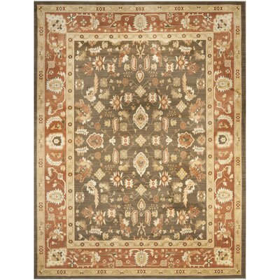 Wakely Brown Area Rug Rug Size: Rectangle 96 x 13