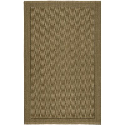 Marston Moss Area Rug Rug Size: Rectangle 5 x 8