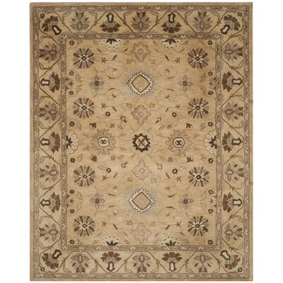 Caresse Hand Tufted Wool Beige Area Rug Rug Size: Rectangle 8 x 10