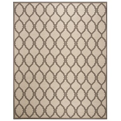 Miesha Contemporary Natural Area Rug Rug Size: Rectangle 4 x 6