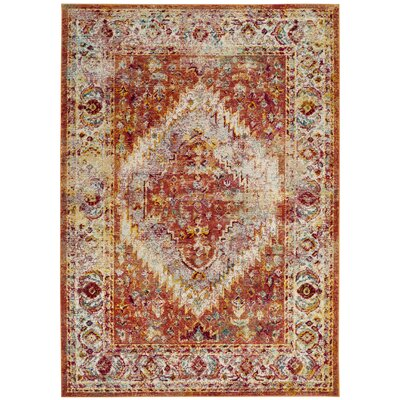 Mcintosh Orange Area Rug� Rug Size: Rectangle 9 x 12