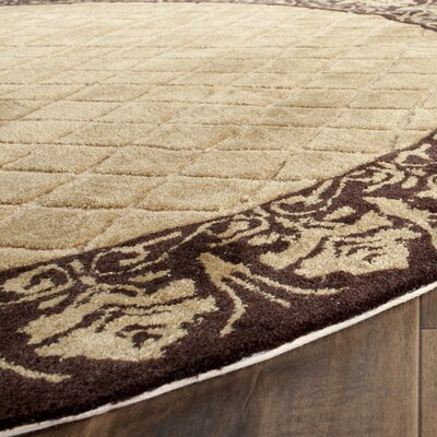 Caine Hand Tufted Ivory/Chocolate Bordered Area Rug Rug Size: Rectangle 4 x 6