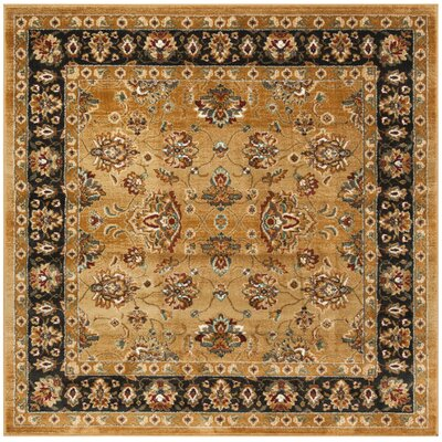 Lowe Beige/Brown Area Rug Rug Size: Square 4
