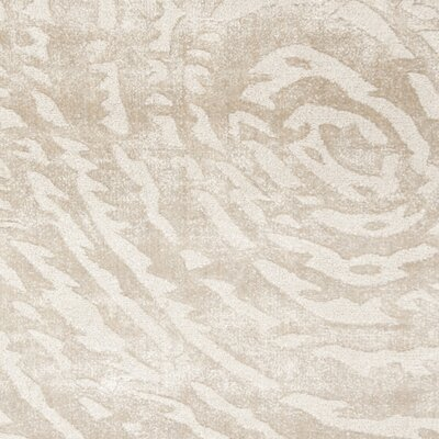 Alcanza Hand Woven Cotton Ivory Area Rug Rug Size: Rectangle 6 x 9