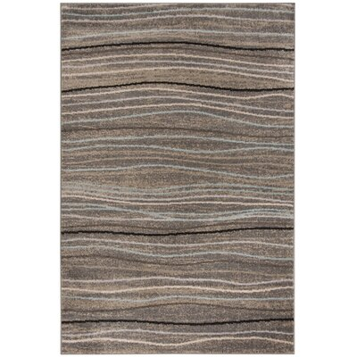 Quiros Silver/Beige Area Rug Rug Size: Rectangle 51 x 76