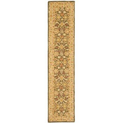 Anatolia Area Rug Rug Size: Runner 23 x 10