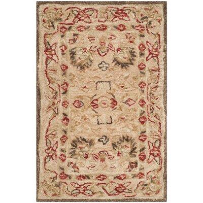 Anatolia Hand-Woven Wool Brown Area Rug Rug Size: Rectangle 2 x 3