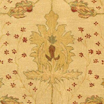 Anatolia Cream/Red Area Rug Rug Size: Rectangle 6 x 9