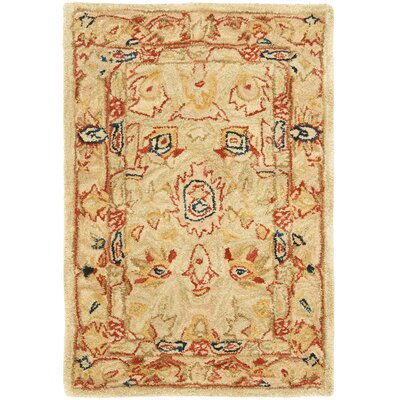 Anatolia Area Rug Rug Size: Rectangle 2 x 3