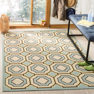 Hampton Green Indoor/Outdoor Area Rug Rug Size: Rectangle 51 x 77