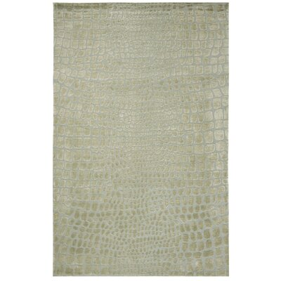 Amazonia Hand-Tufted Gray/Green Area Rug Rug Size: Rectangle 56 x 86