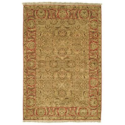 Old World Light Green/Rust Area Rug Rug Size: 6 x 9 Rectangle