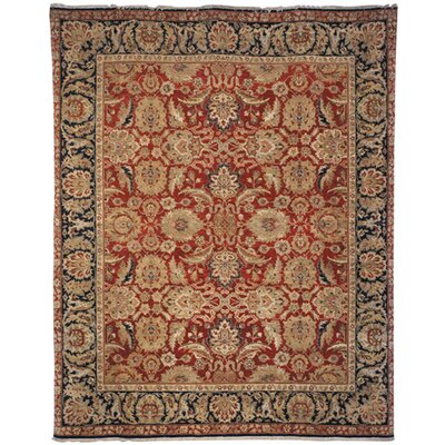 Old World Red/Navy Agra Rug Rug Size: 6 x 9 Rectangle
