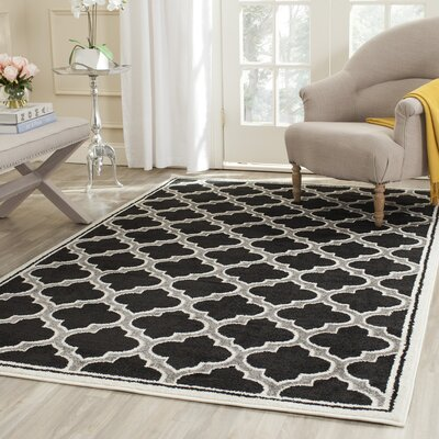 Maritza Black/Gray Indoor/Outdoor Area Rug Rug Size: Rectangle 4 x 6