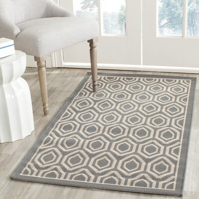 Catharine Anthracite / Beige Indoor / Outdoor Area Rug Rug Size: Rectangle 27 x 5