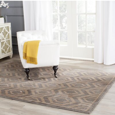 Infinity Geometric Gray/Beige Area Rug Rug Size: Rectangle 4 x 6