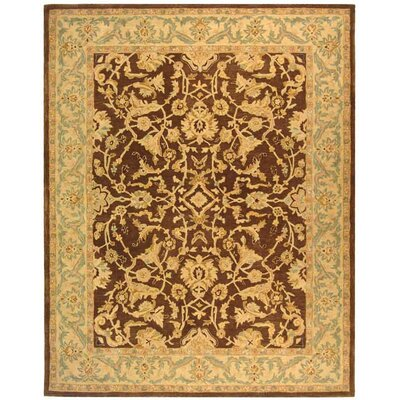 Anatolia Brown/Tan Area Rug Rug Size: Rectangle 9 x 12