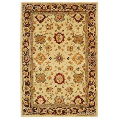 Anatolia Ivory/Brown Rug Rug Size: 5 x 8