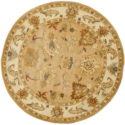 Bergama Area Rug Rug Size: Rectangle 6 x 9