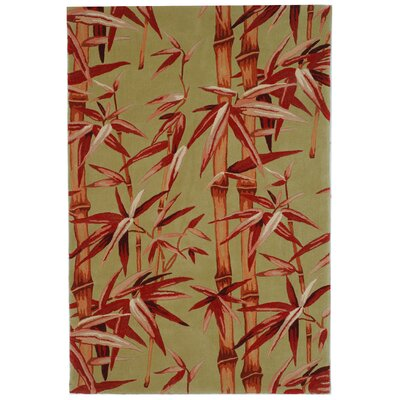Mandarin Sage/Rust Rug Rug Size: 9 x 12
