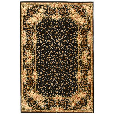 Persian Court Black Rug Rug Size: Runner 23 x 10