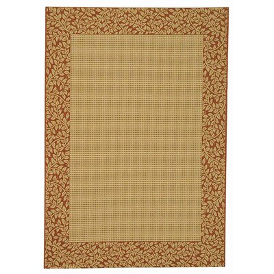 Courtyard Natural/Terracotta Outdoor Area Rug Rug Size: Rectangle 67 x 96
