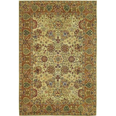 Anatolia Brown Area Rug Rug Size: Rectangle 2 x 3
