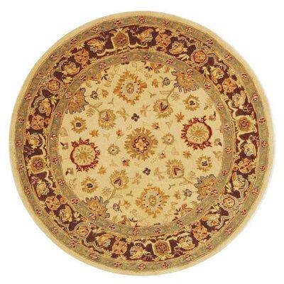 Anatolia Ivory/Brown Rug Rug Size: Round 4